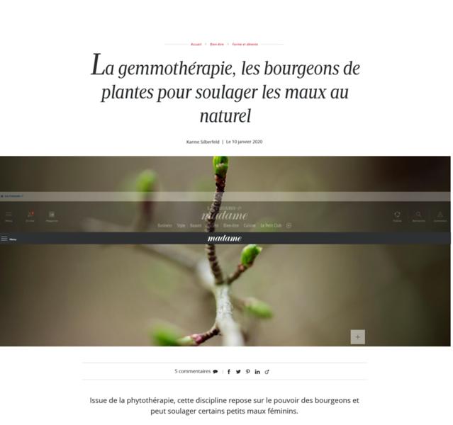 Screenshot_2020-02-11 La gemmothérapie, les bourgeons de plantes pour soulager les maux au naturel.png