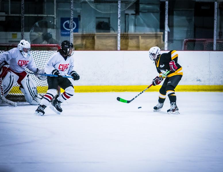 Bruins2-549.jpg