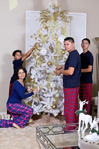 Camorlinga Family Christmas 2014
