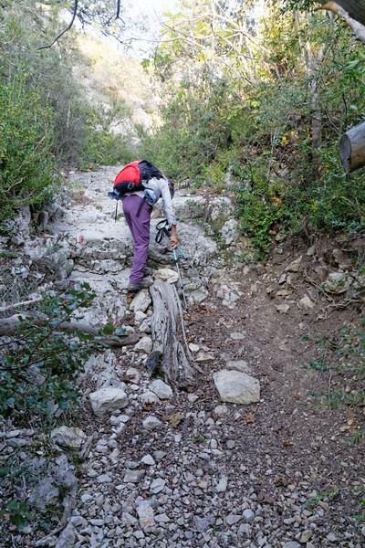 Les Borrys - Portalas - Roque des Bancs - Baume Rousse (84)
