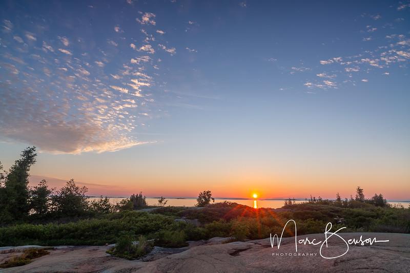 Elm Tree Island Sunrise
