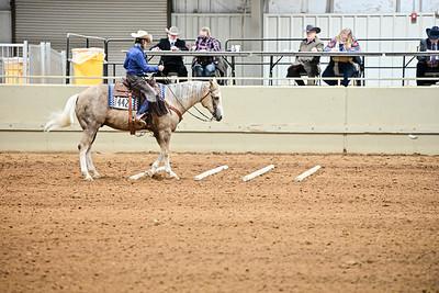 Amateur Ranch Riding