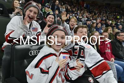 Boys Hockey Class AA 19-20