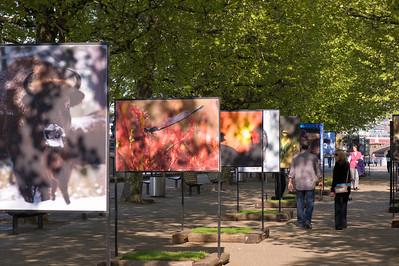 Photographic exhibition on Southbank, London, United Kingdom
