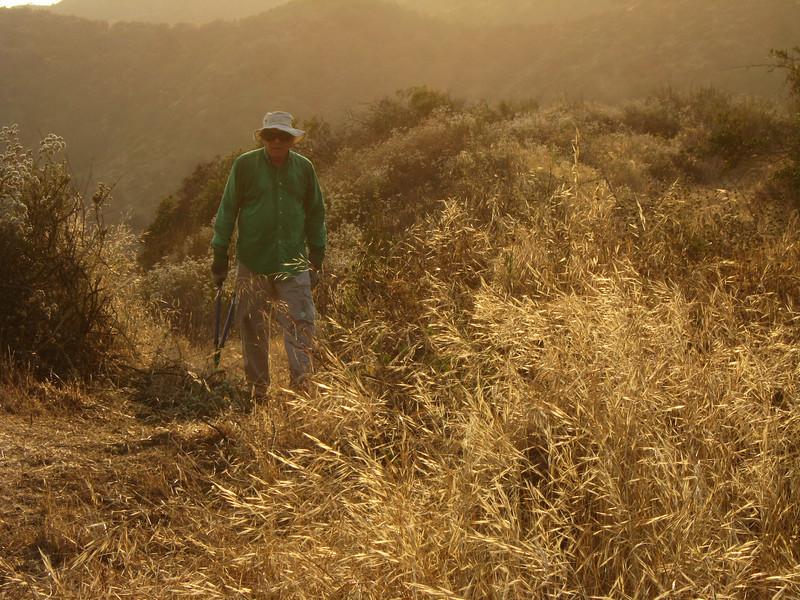 20080625010-Glendale Las Flores Trailwork.JPG