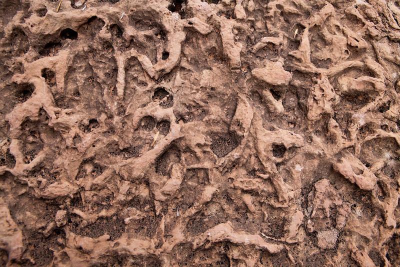 Grand Canyon October-0621.jpg