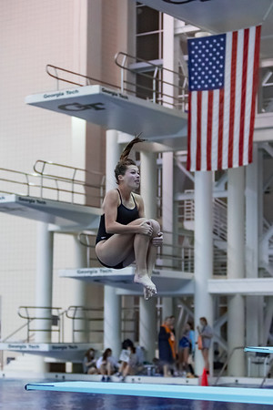 State Diving Championship - Girls - February 2, 2017