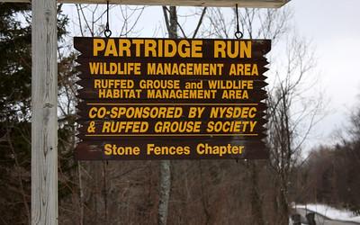 Partridge Run