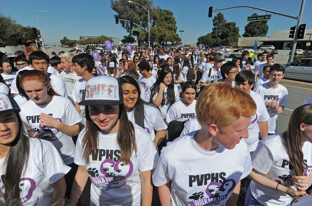 . Hundreds of Peninsula High School students took part in the school\'s Walk for Life on Wednesday which raises money for cancer research and awareness.  Students begin the walk to Highridge Park, streaming across Silver Spur Road from the school. 20130227 Photo by Steve McCrank / Staff Photographer