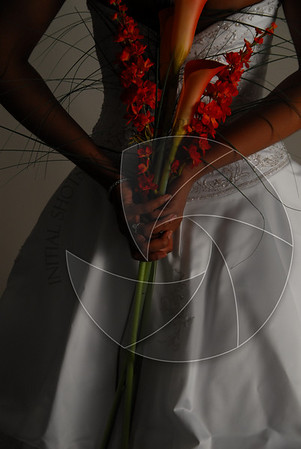 Bridal Session Proof