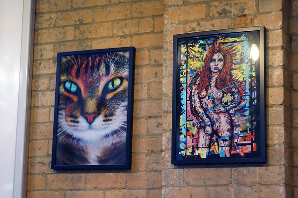 The Fitzroy Art Collective