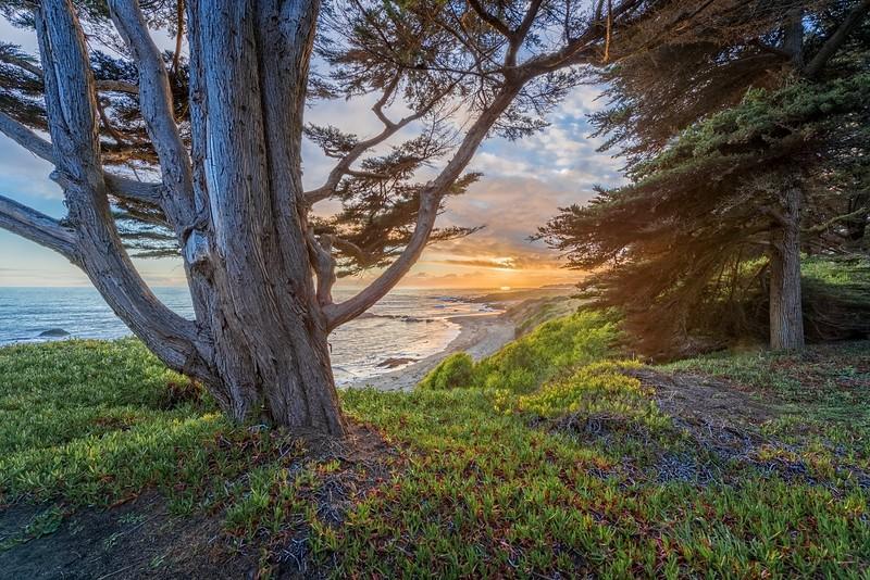 Backyard Sunset View