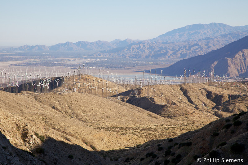 Windmills and Palm Springs in the late afternoon light. From the PCT