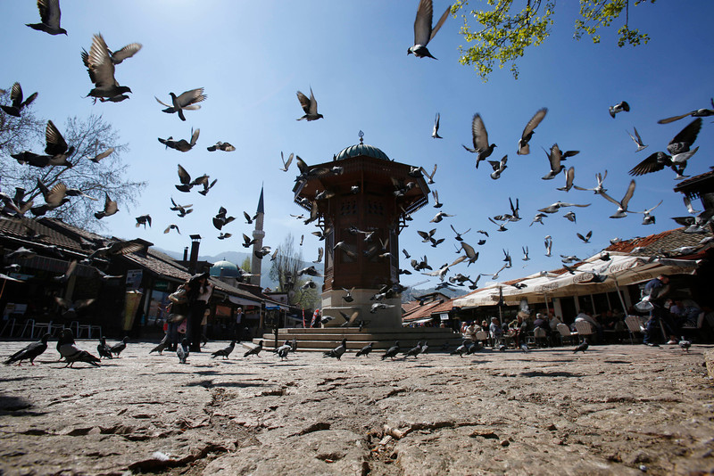 . In this Tuesday, April 8, 2014, birds fly around the Sebilj fountain on the central square in Sarajevo, Bosnia-Herzegovina. Tourists usually stop at the Sebilj fountain on the central square for selfless and to refresh themselves from on to its pipes. (AP Photo/Amel Emric)