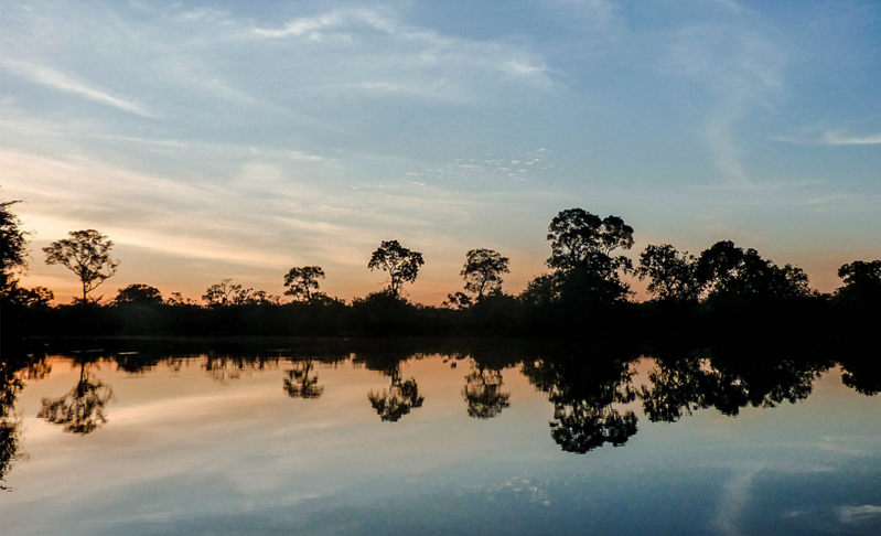 sunset over the Pantanal in Brazil.png