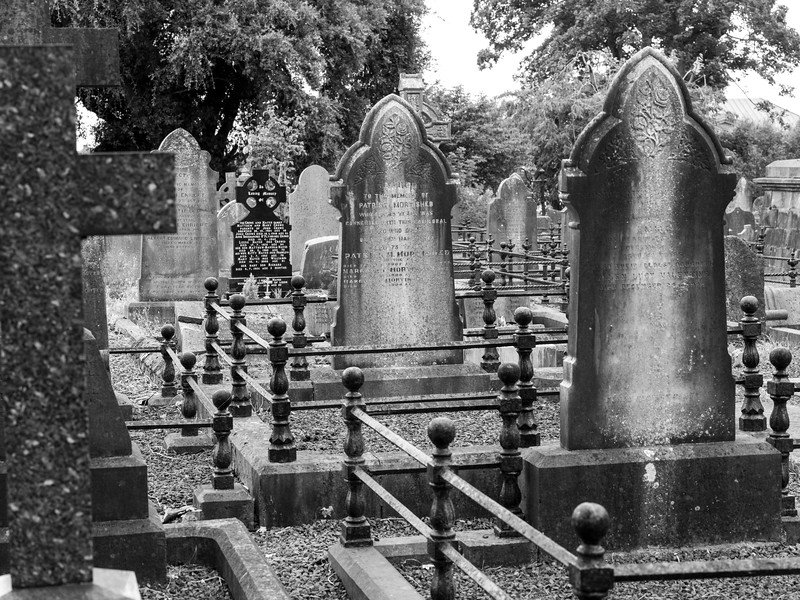 View of a tombstones in a graveyard, St. Mary's Cathedral, Kings Island, Limerick, County Limerick, Ireland