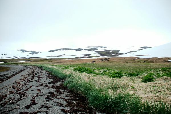 Veiðileysufjörður - Kvíar
