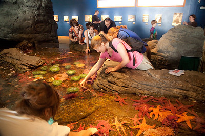 2010_06 Seattle Aquarium