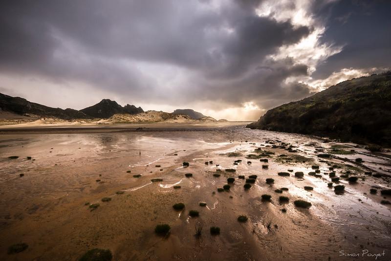 Stewart Island Beach.jpg
