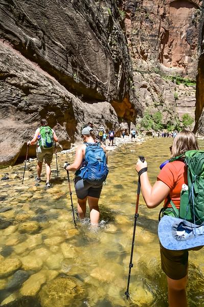 2019 Grand Canyon-92.jpg