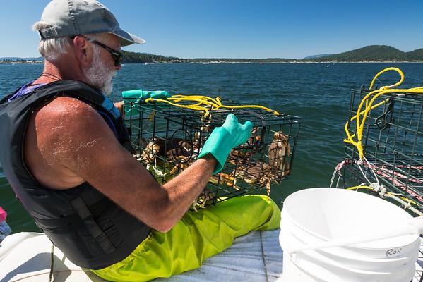 Anacortes Crabbing