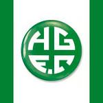 Holmer Green FC