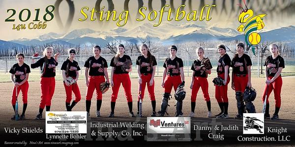 Sting Softball Banners