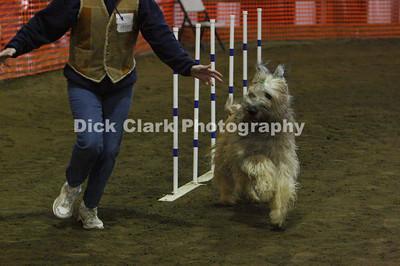 Dayton Dog Training Club AKC Trials - Jan. 2009