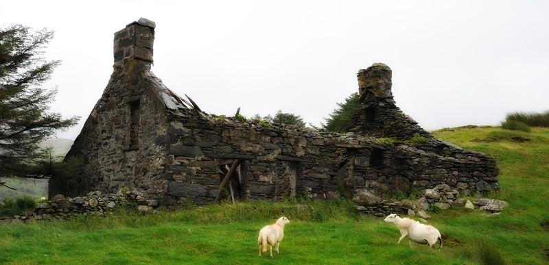 Snowdonia, Wales.