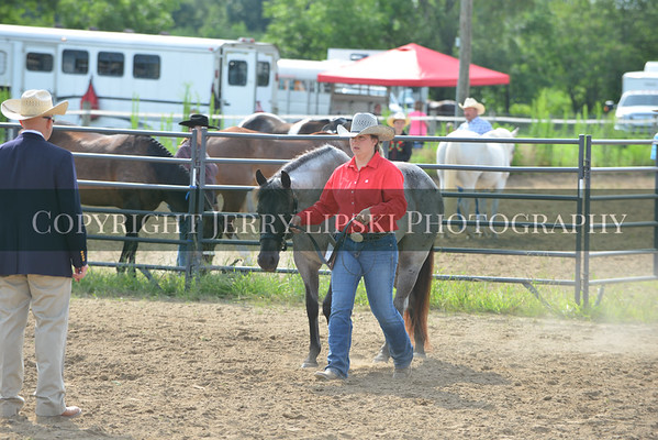 Class 3 . Jr Horse Halter