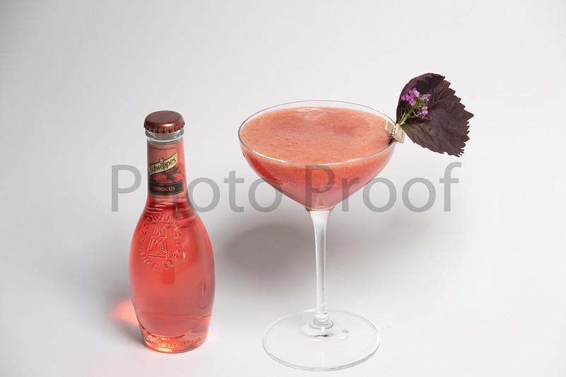 BIRDSONG Schweppes Cocktails 197.jpg