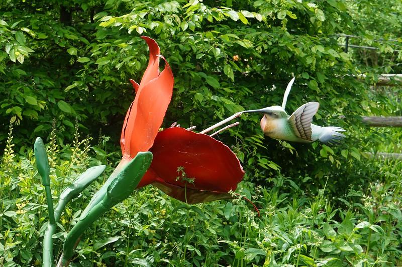 Reeves-Reed Arboretum 012.jpg
