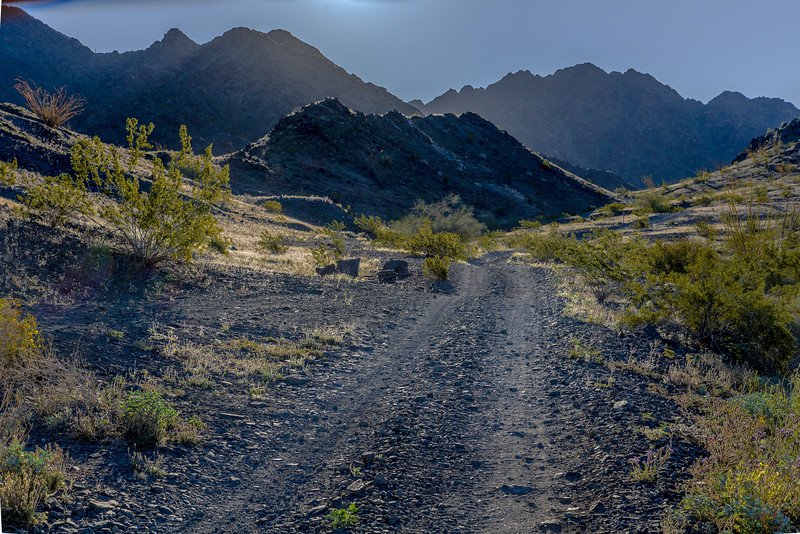 Dirt Road in Desert #2