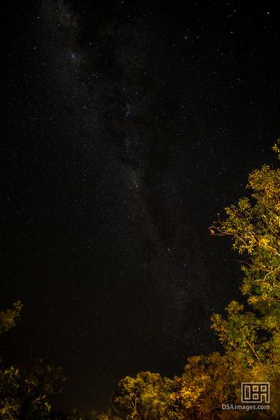 Night sky at Cicada Lodge