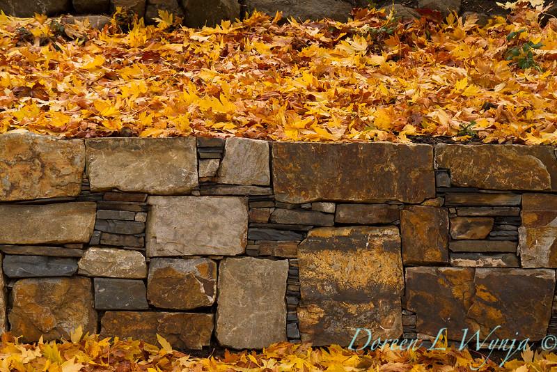 Stone retaining wall - fall leaves_639.jpg