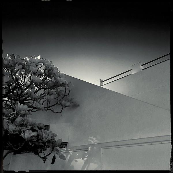 HipstamaticPhoto-514528698.962980.jpg