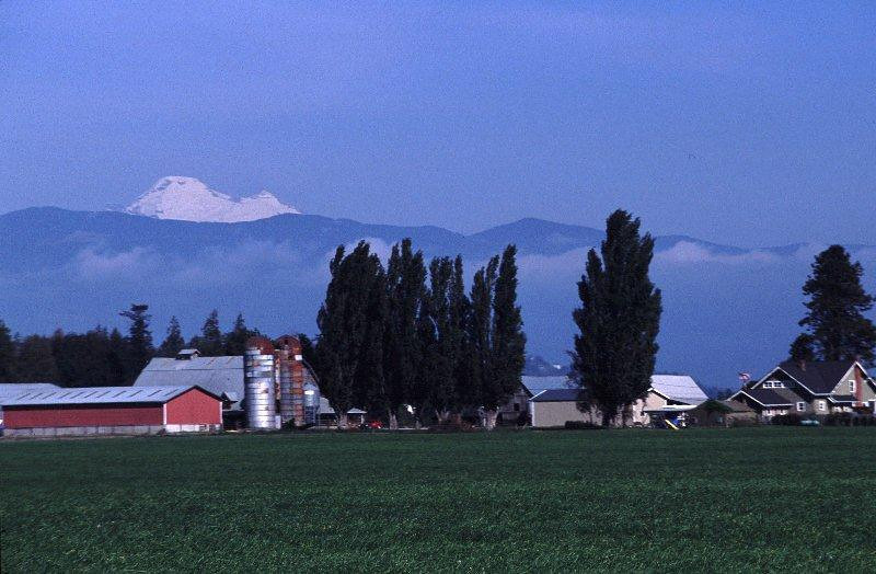 Farm Mt. Vernon.jpg