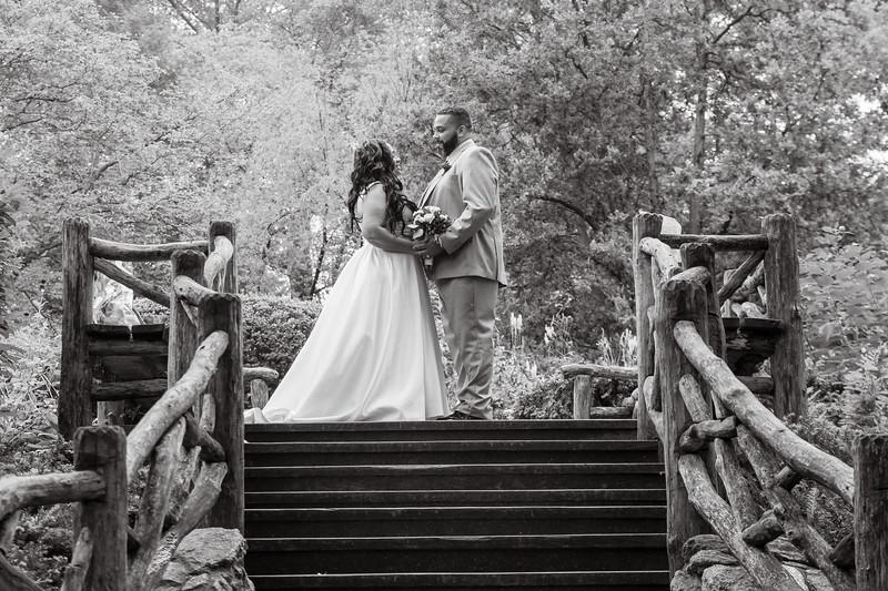 Central Park Wedding - Iliana & Kelvin-81.jpg