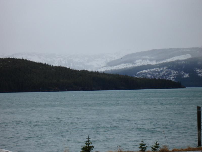 Alaska 2008 008.jpg