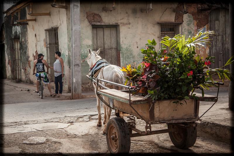 Cuba-Trinidad-IMG_3222.jpg