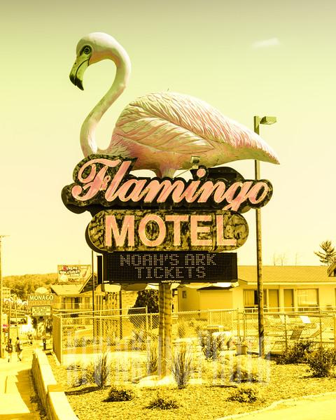 Flamingo Motel & Suites