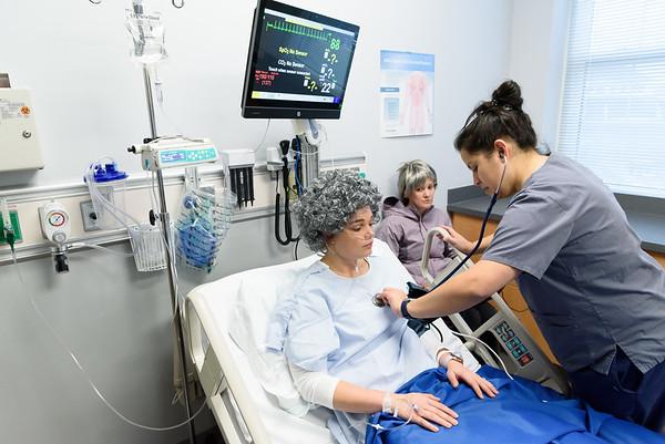 undergraduate nursing