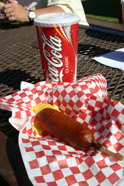 Ellen's $8.50 lunch.  At least the corndog was hot, tasty, and cooked properly.