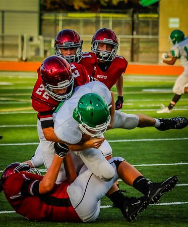 Eastlake Freshman Football 2016