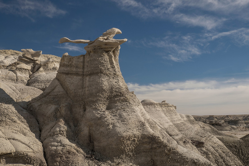 'Bisti Badlands' in New Mexico