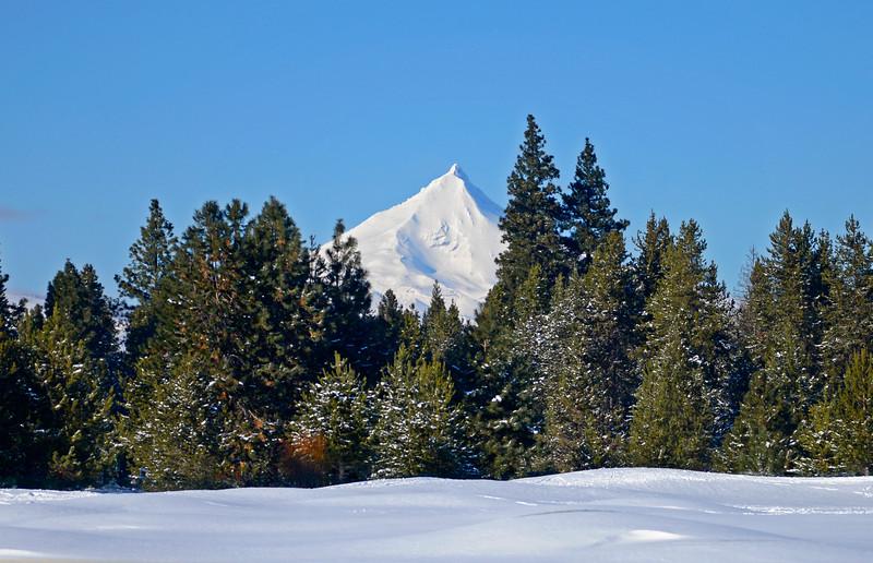 Mt.Jefferson from Big Meadow range-KateThomasKeown_KTK6209.jpg