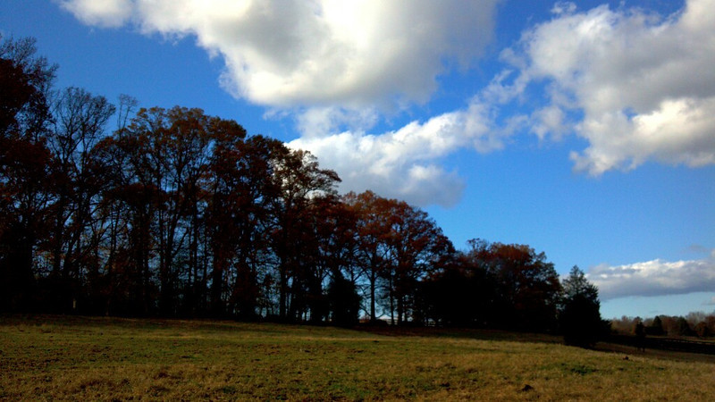 2011-11-17_15-31-16_645_edit0.jpg
