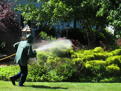 Barnes Nursery provides Services including spyder spraying