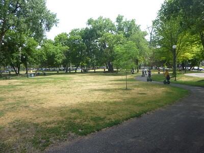 Sculpture Garden: June 27 2021 (10:30)