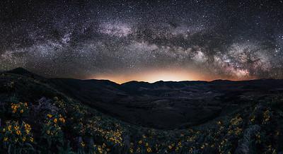 Radium State Wildlife Wildflowers and Milkyway, Colorado